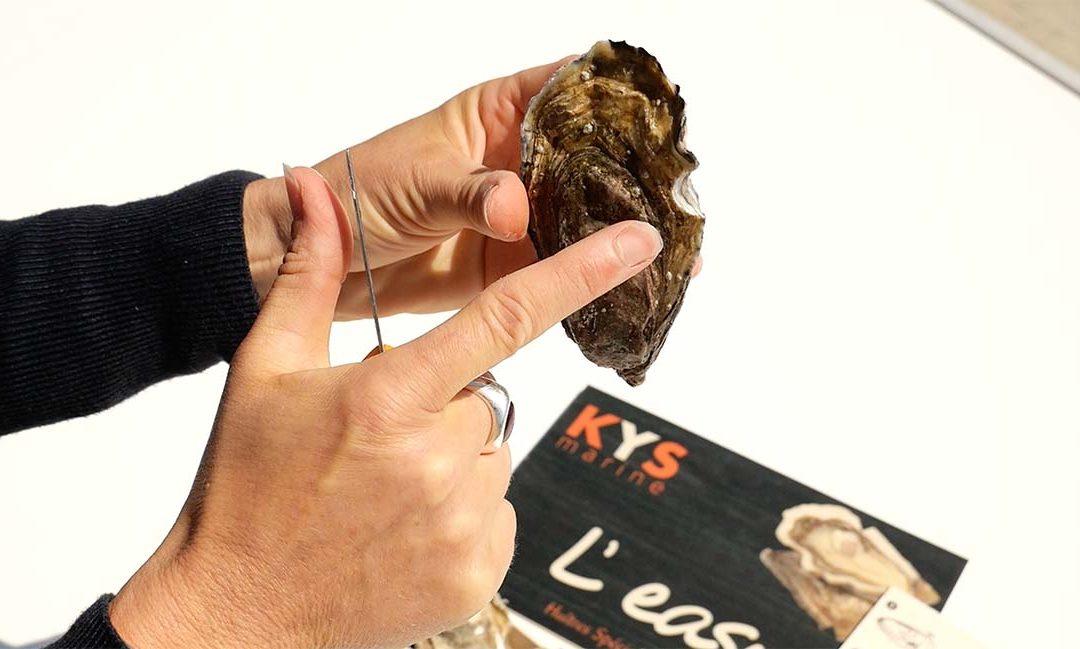 Une huître à ouverture facile ?