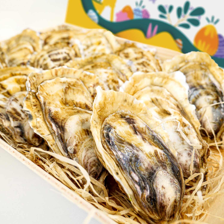 huître fine de bretagne